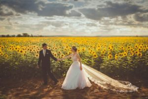wedding couple in a field of flowers