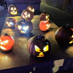 Denver botanic glow pumpkins