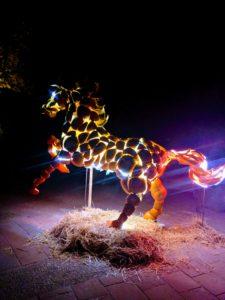 pumpkin horse Glow denver botanic