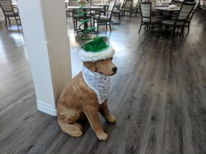 Quincy place christmas dog