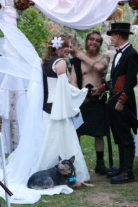 Steampunk Fairy vows