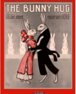 bunny hug rag